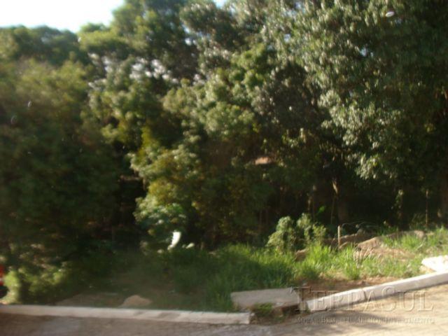 Sol Nascente - Casa 3 Dorm, Teresópolis, Porto Alegre (TS898) - Foto 7