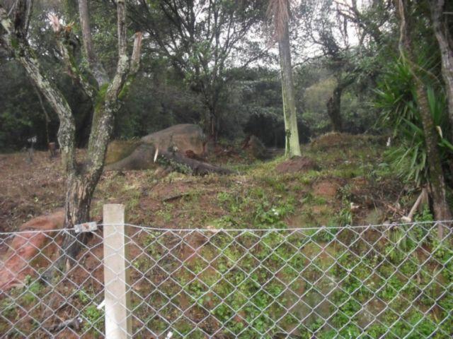 Terreno, Ipanema, Porto Alegre (IPA7968) - Foto 5