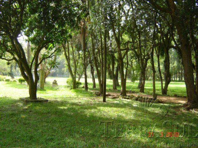 TerraSul Imóveis - Terreno, Ponta Grossa (PG133) - Foto 2