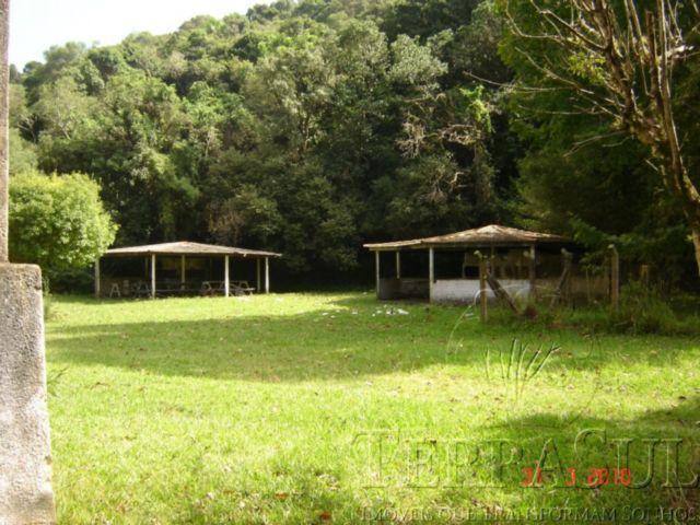 TerraSul Imóveis - Terreno, Ponta Grossa (PG133) - Foto 4