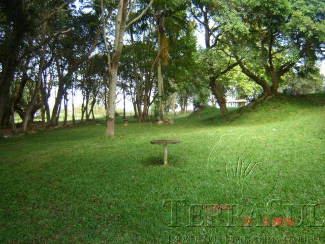 TerraSul Imóveis - Terreno, Ponta Grossa (PG133) - Foto 7
